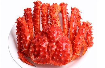 智利帝王蟹